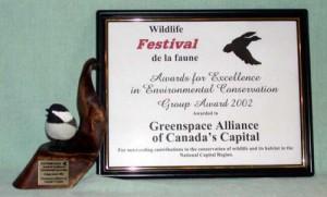 wildlife_festival_award